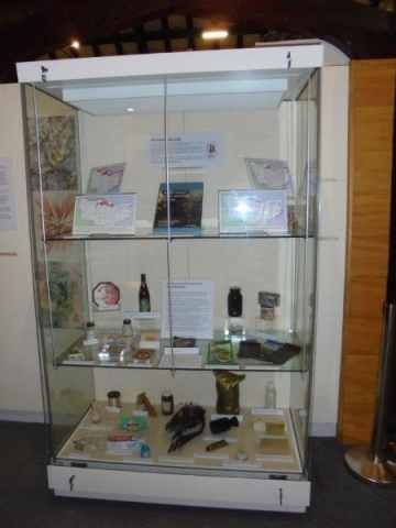 Kent Field Club display case at Maidstone Museum