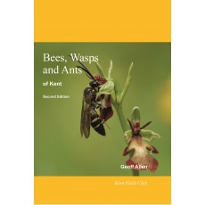 Bees, Wasps and Ants of Kent (2020)
