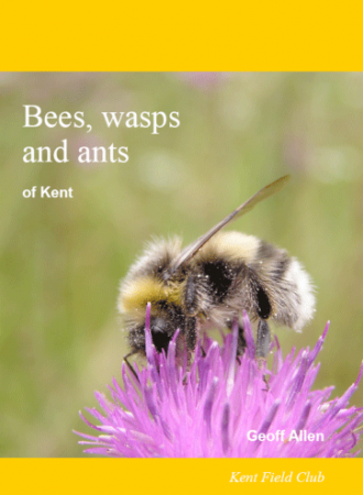 Bees, Wasps and Ants of Kent