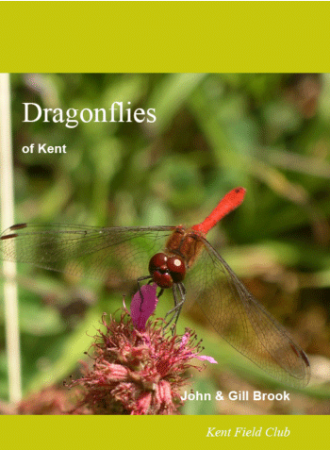 Dragonflies of Kent